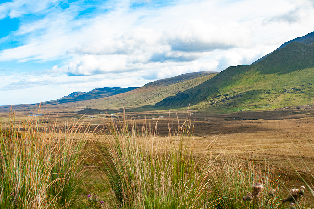Nature. Scotland 2016